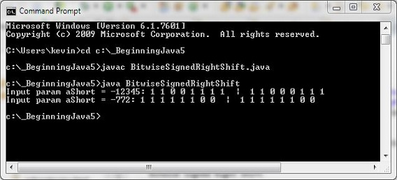run bitwise signed right shift